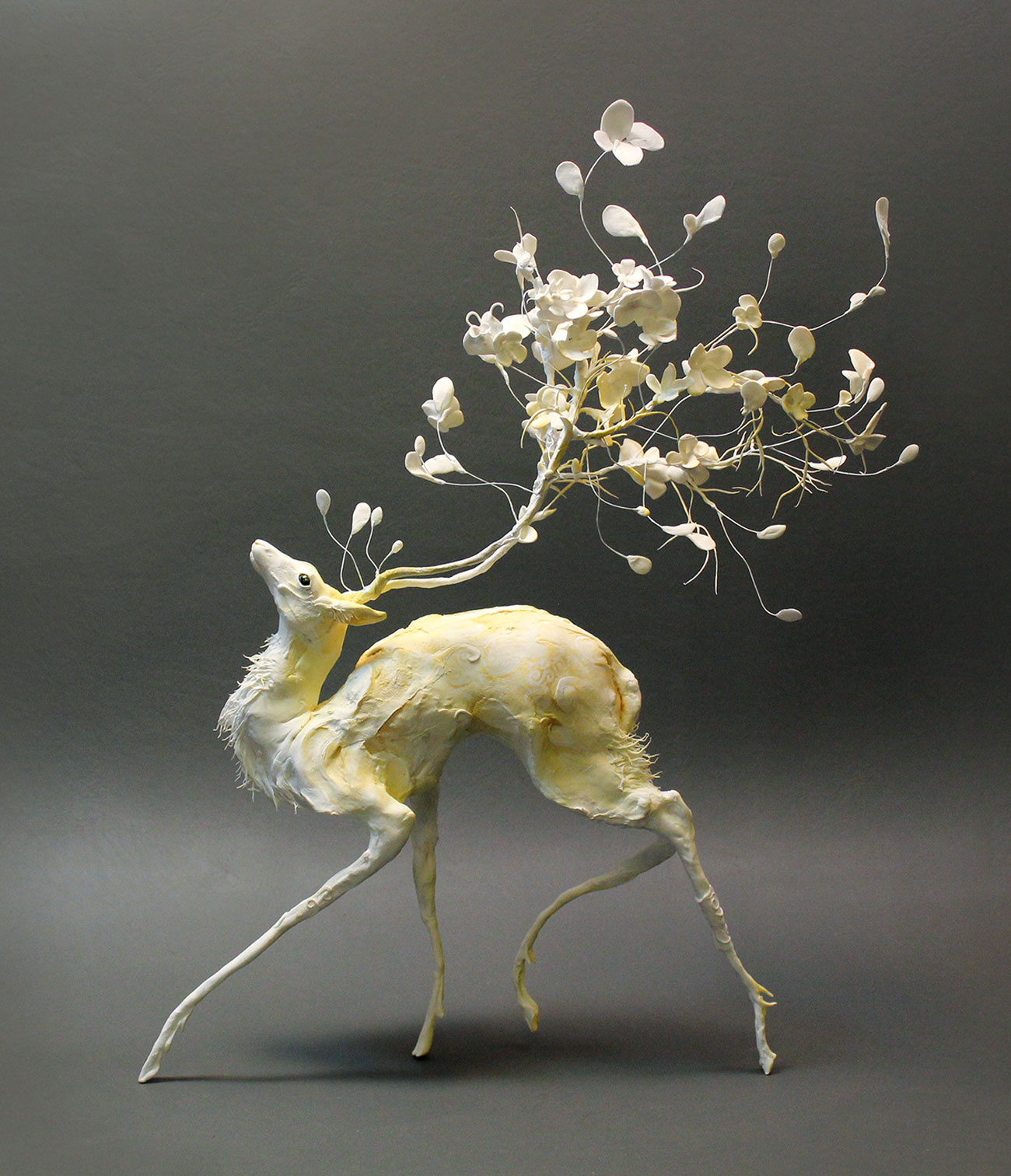 Ellen jewett deer