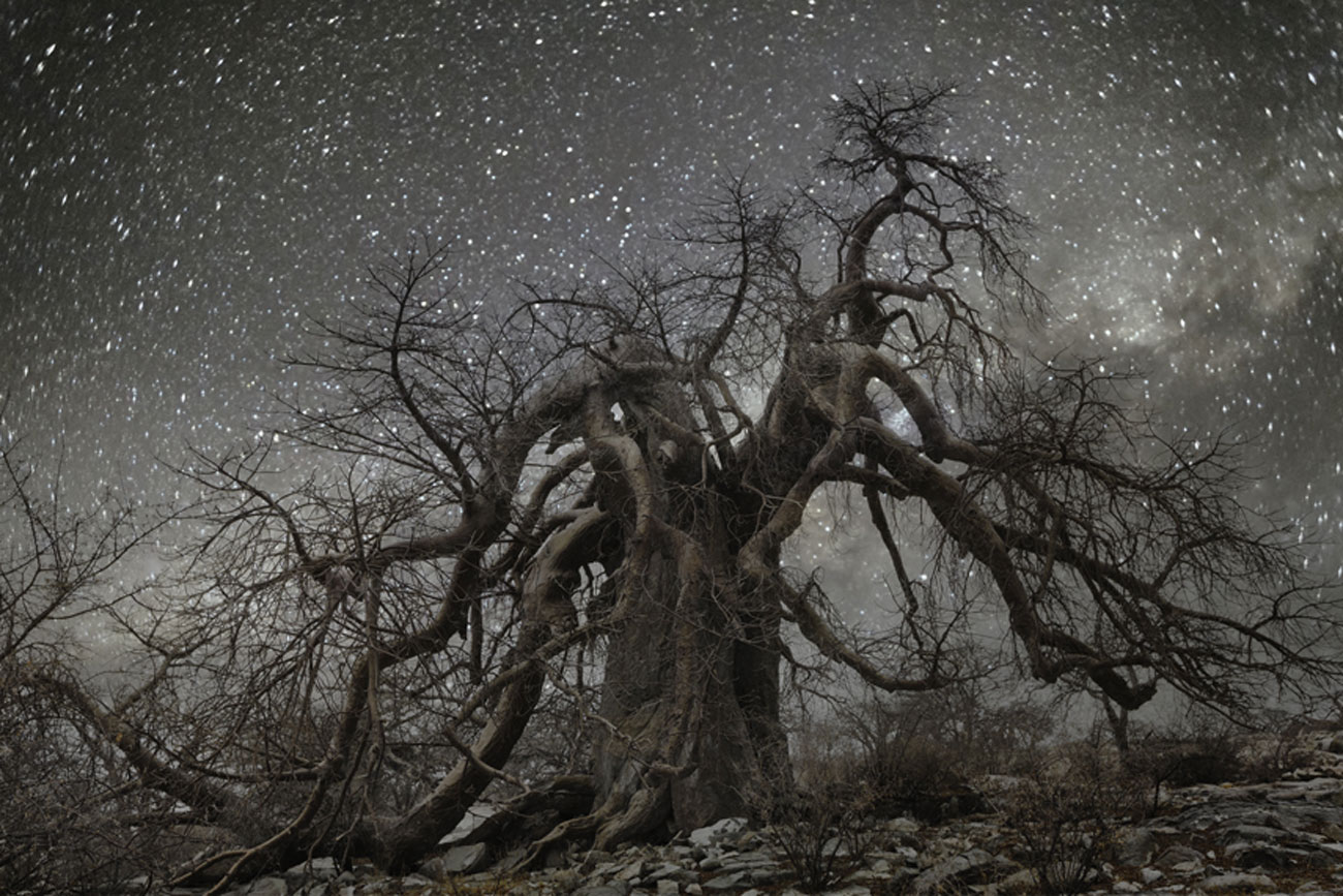 beth moon diamond nights Hydra