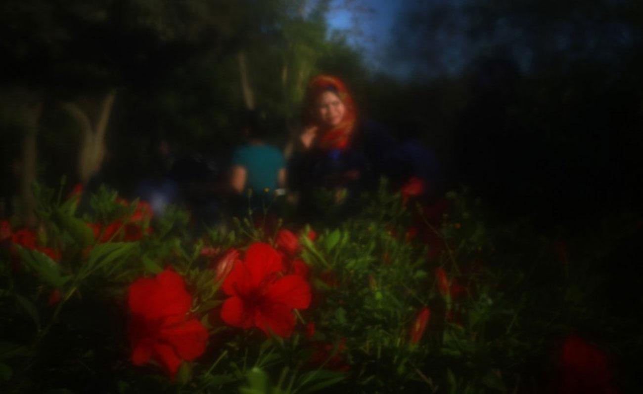 hassan-ammar-burka-flowers
