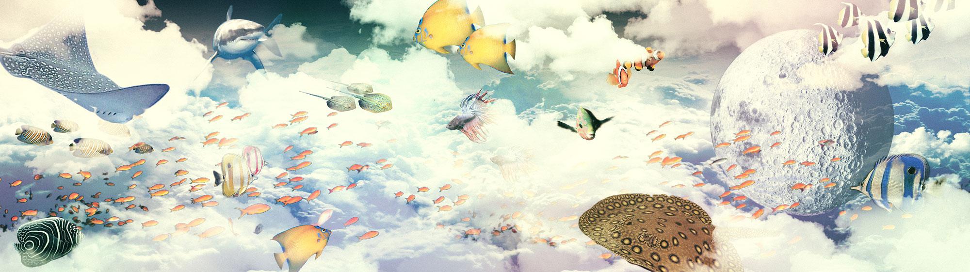 nuotando nell'aria scenografia