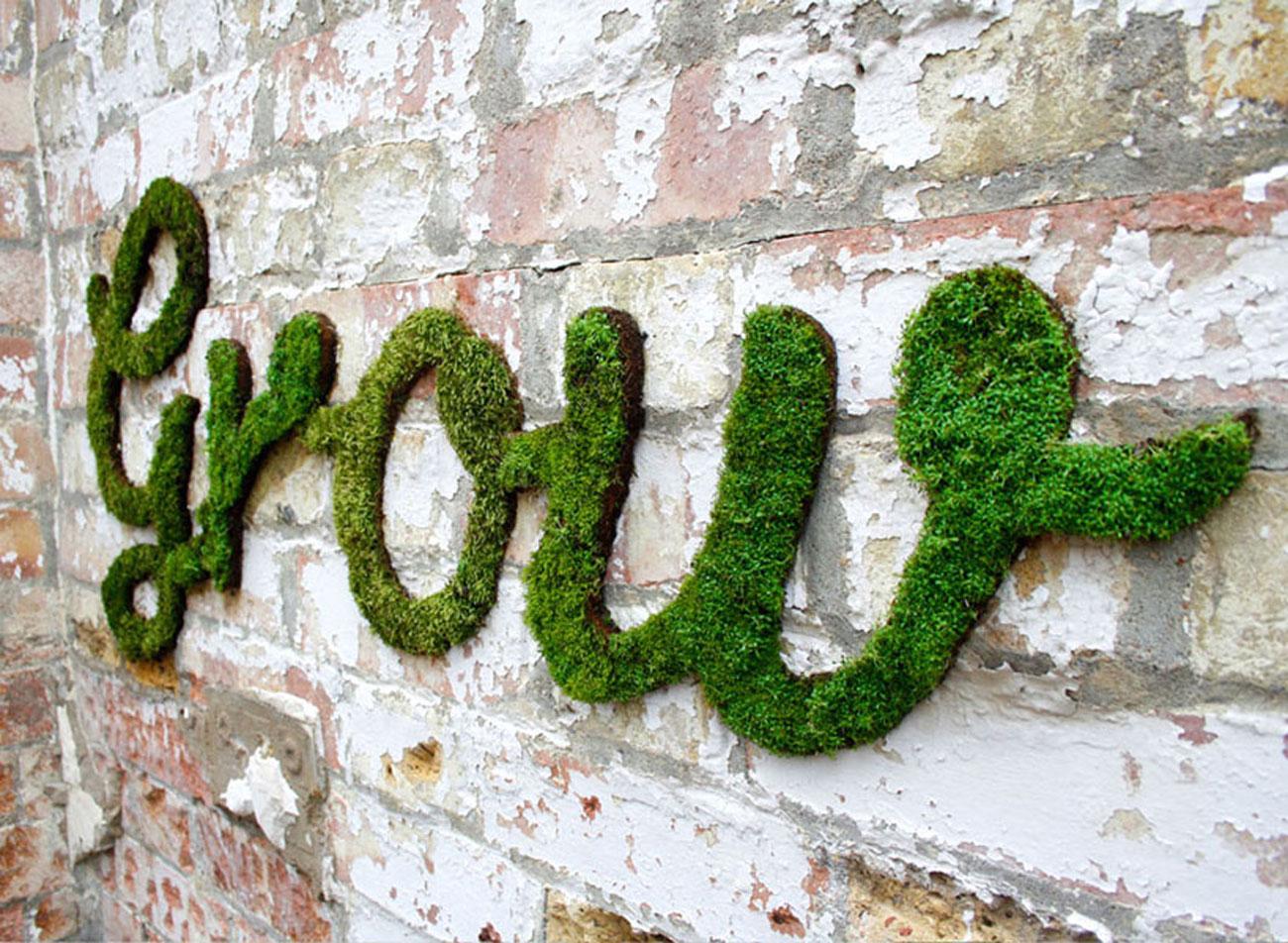anna-garforth-moss-graffiti-designboom-051