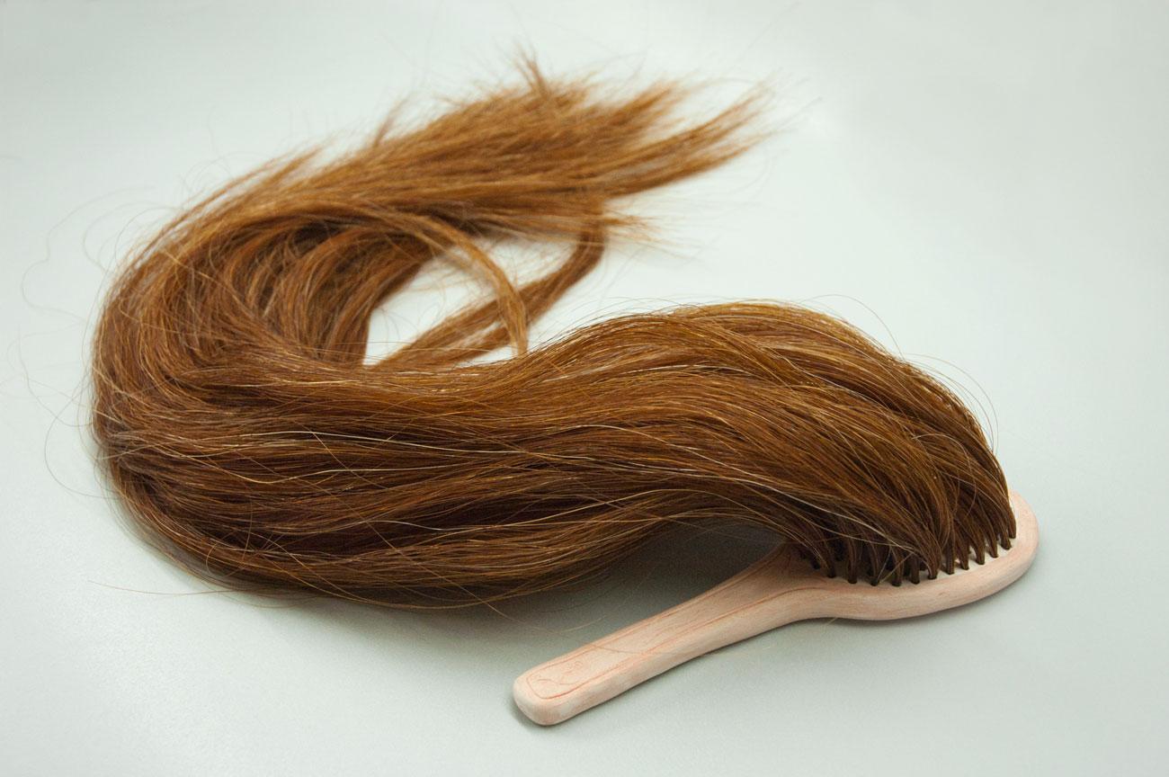 fiona roberts hairbrush